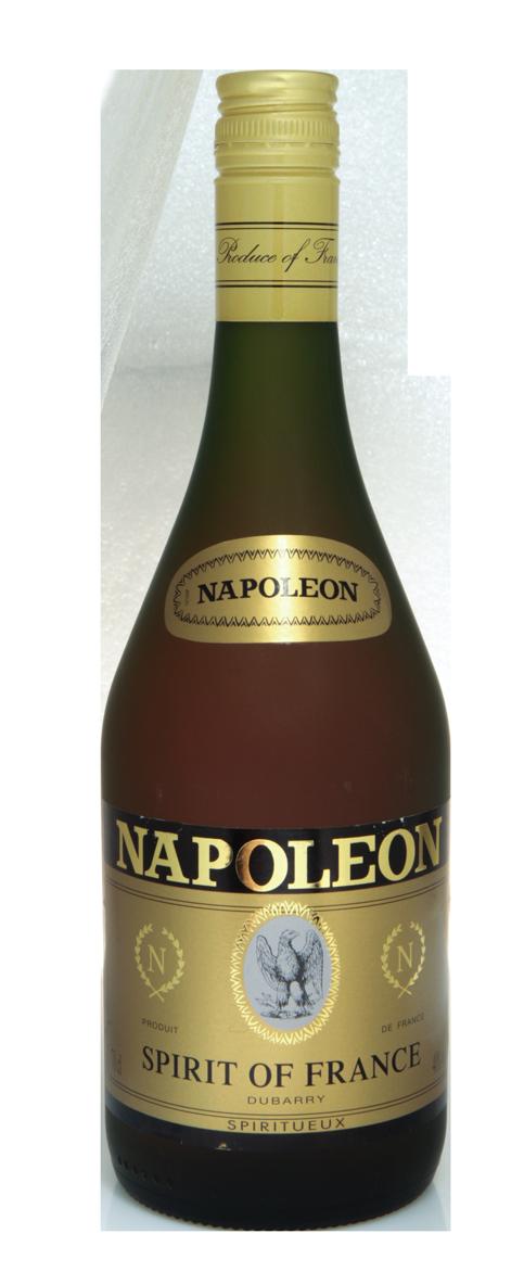 NAPOLEON_SPIRIT-givre